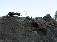 """Metal Ant """"Kotka"""""""