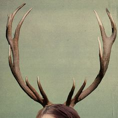 Christmas Antlers Surreal Antler Photograph by TheShutterbugEye, $18.00