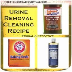 Urine Removal Cleaning Recipe - Inexpensive yet Effective - Just in case we get another puppy!