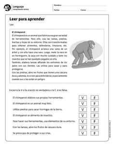 Way To Learn Spanish Activities Spanish Worksheets, Spanish Teaching Resources, Spanish Activities, Teaching Tips, Learning Activities, Spanish Lesson Plans, Spanish Lessons, Learn Spanish, Speech Language Therapy