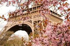 Весна в Париже. .