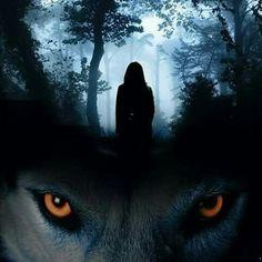 O comum enoja... O bizarro excita... As críticas fortificam... A quietude inquieta-me e a insanidade me faz pensar tudo isso. Denise F.… Fantasy Wolf, Dark Fantasy, Fantasy Art, Wolf Spirit, Spirit Animal, Wolf With Red Eyes, Bark At The Moon, Wolf Artwork, Snake Art