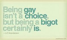 I wonder, if bigots even READ words instead of hurling them around...