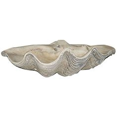 Large Clam Shell House Parts http://www.amazon.com/dp/B00A2Z6UJS/ref=cm_sw_r_pi_dp_lYnpxb0E6QEG5