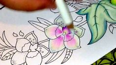Magical Jungle by Johanna Basford Part 2 of Page 1 Colouring Orchids
