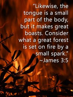 Image result for picture James 3:5 Bible verse