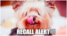 """Blue Buffalo has issued its second recall since the beginning of this year. According to Dog Food Advisor, the voluntary recallis due to """"quality issues"""" with the foillayer that seals the top of some wet foodcontainers. Theaffected lids are on 17 …"""