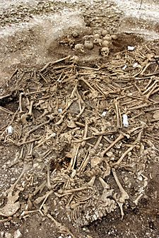 The bony discovery of 50 young Viking male skeletons, decapitated and lumped in an old quarry pit. Found by diggers working on an Olympic relief road in Weymouth five years ago. How sad for them. Male Skeleton, Norse Vikings, Bizarre, Ancient Mysteries, After Life, Viking Age, History Channel, Anglo Saxon, Aliens