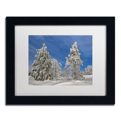 Winter Blues by Lois Bryan Framed Photographic Print