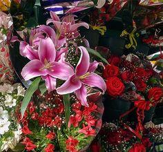 Flores.La belleza que acaricia.#fotos,#fotografías,#fotodeflores,#photos,#photography,#flowers,#photographyflowers,@fotografos_argentina ,@worldphotoorg ,@fotossinporque,😎😁