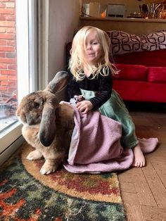 In the event you are looking for a family pet which is not just adorable, but simple to have, then look no further than a family pet bunny. Cute Baby Bunnies, Funny Bunnies, Cute Little Animals, Cute Funny Animals, Giant Bunny, Big Bunny, Cute Creatures, Animals Beautiful, Animals And Pets