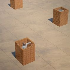 Self Defence - Ron Francis Conceptual Art, Surreal Art, Ron Francis, Dangerous Minds, Magic Realism, Lowbrow Art, Australian Artists, Artwork, Inspiration