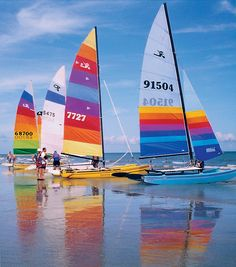 Catamaran rentals on Hilton Head Island's South Beach (flickr photo)