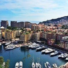 Exploring Monte-Carlo views. ⛵️