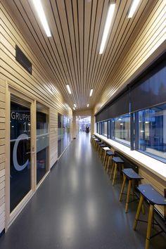 Galería de Escuela Sørli / Filter Arkitekter - 5