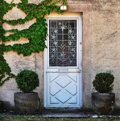 Door - white, ivy, planters