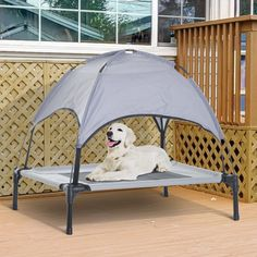 Tucker Murphy Pet Elevated Cooling Dog Bed Cot W/ Canopy Shade - Grey Cool Dog Beds, Cool Pets, Dog Bed Frame, Elevated Dog Bed, Dog Cots, 4 Person Tent, Dog Houses, Little Dogs, Dog Supplies