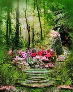 Gardens:  #Garden focal point.