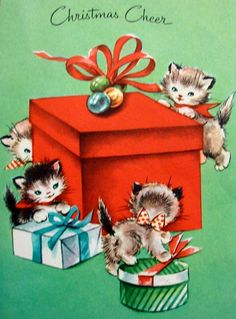 kittens and present