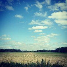 that sky.<3
