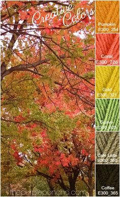 - The Purple Poncho : Creative Colors Fall Trees Palette! on The Purple Poncho Scheme Color, Colour Pallette, Colour Schemes, Palette Design, Yarn Color Combinations, Colours That Go Together, Color Harmony, Creative Colour, Design Seeds