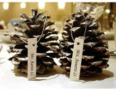 pincecone winter wedding escort cards/ Place cards Snelson Snelson Snelson Grinnell if you liked the pinecone cake. Holiday Wedding Themes, Christmas Wedding, Wedding Events, Christmas Holidays, Our Wedding, Merry Christmas, Weddings, Wedding Ideas, White Christmas
