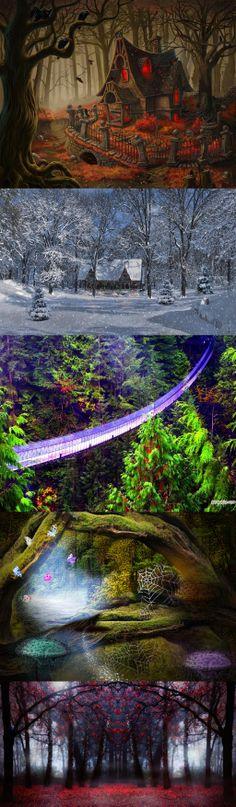 ღ.ฺSpectacular Bridge in Forest.ღ