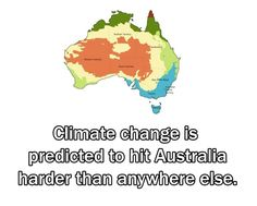Animal Facts, Australia Travel, East Coast, Climate Change, New Zealand, The Good Place, Cool Pictures, Fun Facts, Places To Go