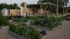 Explore Bok Tower's new kitchen, edible garden with cooking demo - Orlando Sentinel