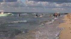 Illegal immigrants arriving to Miami Beach during an early morning fashion shoot.