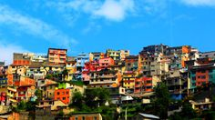 Among the many stakeholders involved in city development, the private sector plays a specific role.  In this guest commentary, Maryse Gautier, co-chair of the preparatory committee of Habitat III, explains how cities and the private sector need each other.