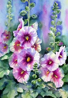 'Hollyhocks' Poster by Ann Mortimer Watercolor 36 × 25 cm. W and N artists on Saunders Waterford Backlit hollyhock … Oil Painting Flowers, Watercolour Painting, Watercolor Flowers, Watercolors, Floral Paintings, Oil Paintings, Landscape Paintings, Arte Floral, Hollyhocks Flowers