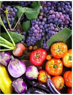 Trendy fruit and vegetables photography farmers market Ideas Fruit And Veg, Fruits And Vegetables, Fresh Fruit, Vegetables Photography, Fruit Recipes, Farmers Market, Food Art, Harvest, Cooking Tips
