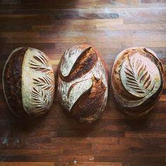 sourdough bread (bread-scoring makes art in artesian bread) - Cozinha - Sourdough Recipes, Sourdough Bread, Yeast Bread, Cornbread Recipes, Jiffy Cornbread, Bread Food, Bread And Pastries, Artesian Bread, Bread Shaping