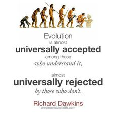 Dawkins is a horrible man for saying that we who do not accept evolution are stupid. Does that mean that Antony Flew went from being smart to being stupid just because he changed his mind about evolution and chose to accept a creator?