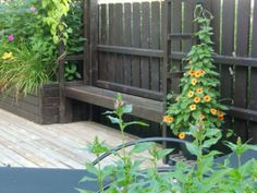 "Bygg ""in"" en bänk i planket. Plank, Fence, Outdoor Structures, Garden, Garten, Lawn And Garden, Gardens, Gardening, Outdoor"