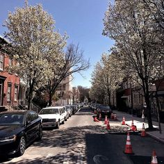 Sometimes it is worth to stop look back and see that with trees blooming spring is moving past the road repairs. OKTIUM Android version is almost done! Enjoy springtime!  #Android #Spring #OKTIUM #NYC #Blossom #Happiness #New #Tech #NewBeginnings