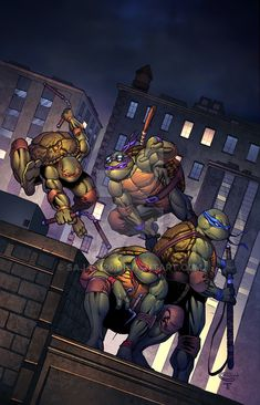 I'm headed up to Megacon to go see , the Artist of this TMNT cover, at the booth! Definitely looking for some CGC gems at the booth. Remember they are at booth 413 at. Ninga Turtles, Ninja Turtles Art, Ninja Turtles Pictures, Teenage Mutant Ninja Turtles, Casey Jones, Comic Books Art, Comic Art, Turtles Forever, Tmnt Girls