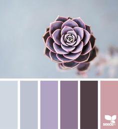 Design Seeds + Color Atlas by Archroma® Colour Pallette, Color Palate, Colour Schemes, Color Combos, Design Seeds, Room Colors, House Colors, Paint Colors, Cactus E Suculentas