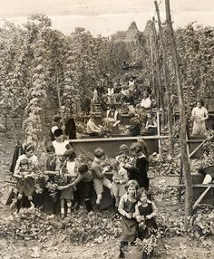 Hop picking Great Pictures, Vintage Pictures, Old Pictures, Old Photos, Vintage Photography, Street Photography, Landscape Photography, London Map, Old London