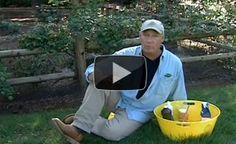 Top Ten Garden Secrets - #4 Dealing With Skunks  - http://www.offthegridnews.com/2014/04/04/top-ten-secrets-4-dealing-with-skunks/