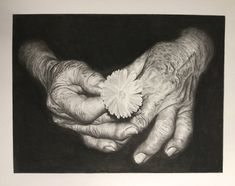 Charcoal of flowers in a man's hands - James Colter