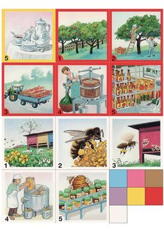 from tree to store, from bee to store, etc. Sequencing Cards, Story Sequencing, Community Workers, Community Helpers, Picture Comprehension, Learning Arabic, Close Image, Speech Therapy, Preschool Activities