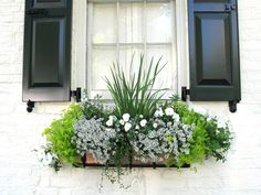 Come on in and check out these Beautiful DIY Window Box Ideas with Curb Appeal. It is simply amazing what a simple Window Box can do for your Home! Winter Window Boxes, Window Box Plants, Window Box Flowers, Balcony Plants, Window Planter Boxes, Flower Boxes, Window Box Diy, Spring Garden, Winter Garden