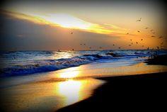 Vacanze Estate 2012: New York, le spiagge più belle