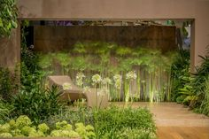 Paul Martin Designs. Back wall of corten tiles and planted in front with Papyrus,with uplighters Garden built by Evershine Projects Pte Singapore — en Singapore Garden Festival 2012 @ Suntec.