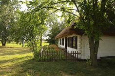 Cottages, Polish, Houses, Country, Architecture, House Styles, Garden, Modern, Nature