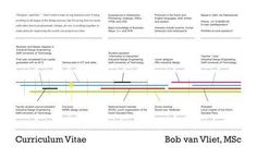 Data Visualization : Resume : 16 Infographic Resumes A VisualTrend Blog About Infographics and Data