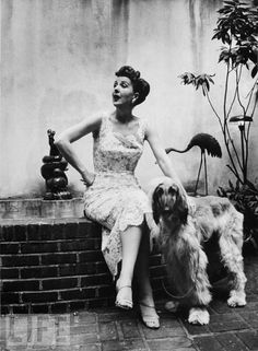 Gypsy Rose Lee Pets Her Pet  The famous stripper relaxes with her Afghan at home, 1957.
