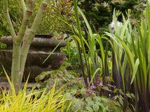 Explore Your Garden Personality: The Whimsical Gardener